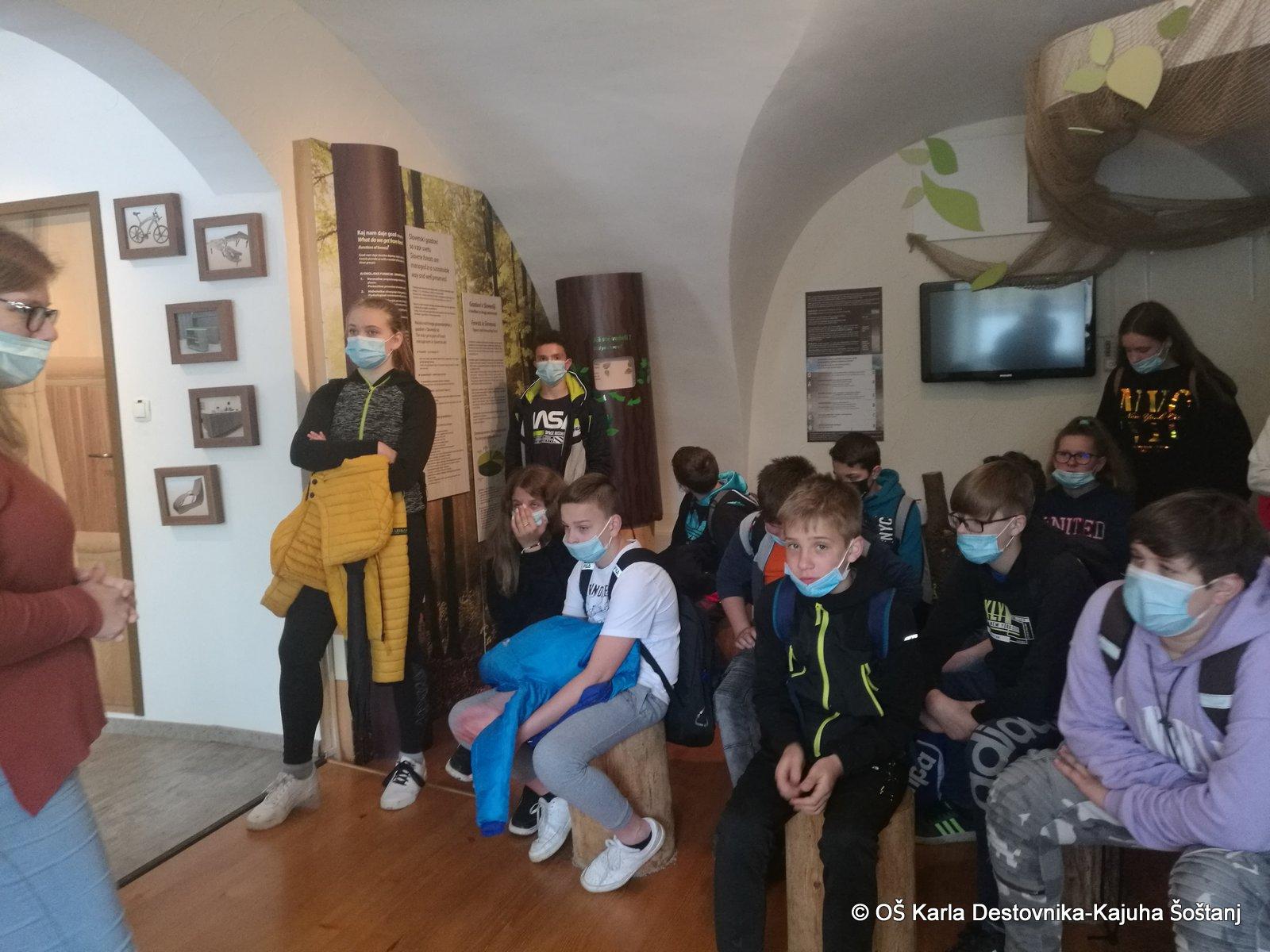 muzejgozdarstva10