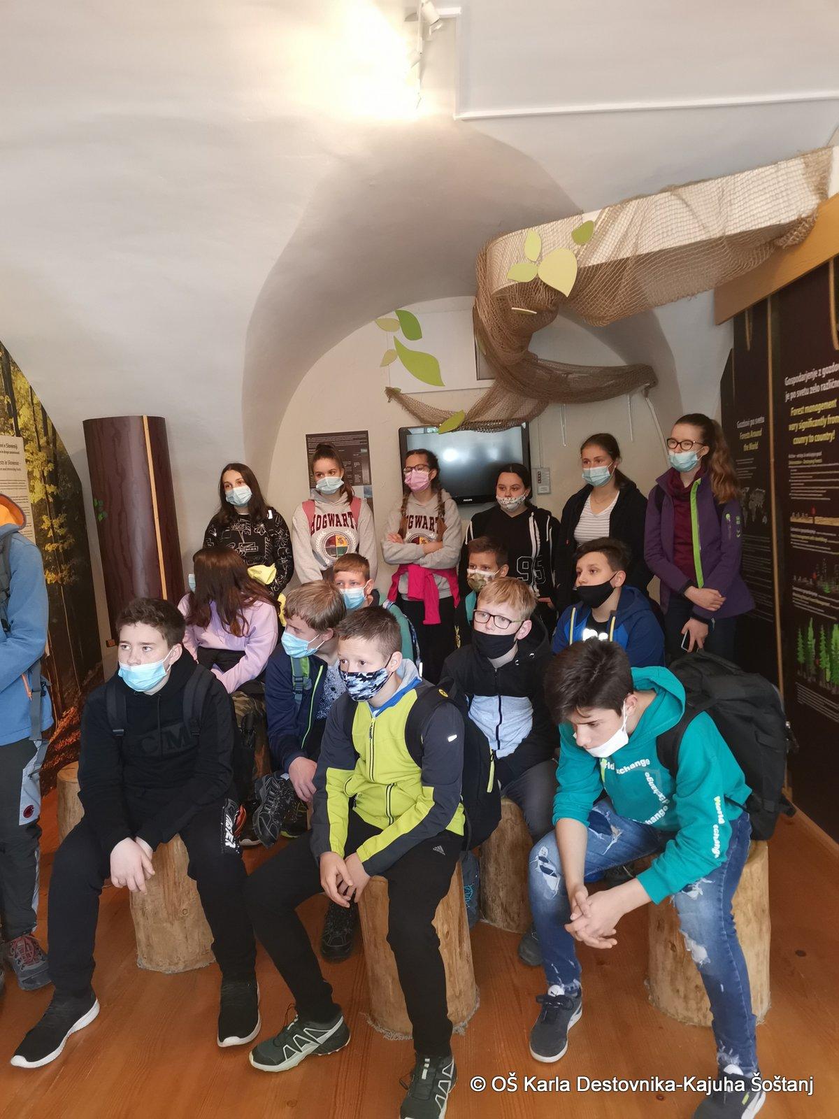 muzejgozdarstva6